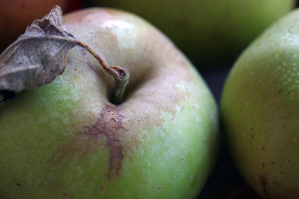 Mele biologiche del frutteto